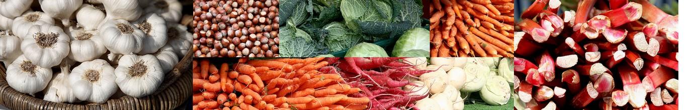 groentekraamgezond